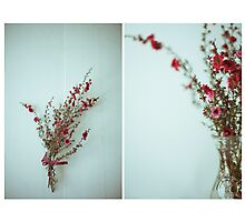 July Diptych 2014 Photographic Print