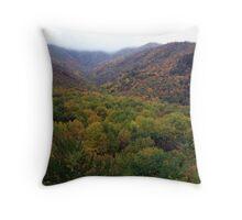 Natures Beauty Throw Pillow
