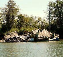 Snoho. River Wreckage by Danielle Morin
