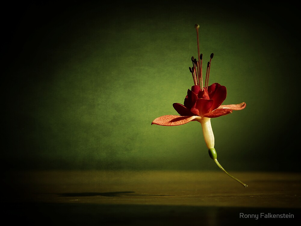 The lightness of being - #3 by Ronny Falkenstein