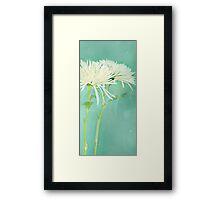 White Frills Framed Print