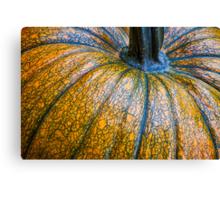Pumpkin Pumpkin Canvas Print