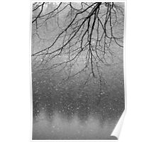Snow flakes and Tree Poster