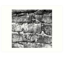 Black and White Wall Art Print