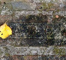 yellow and brick by arteology