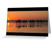CAMELS AT SUNSET , BROOME . W.A Greeting Card