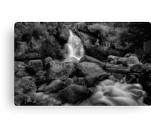 Bathed in Black Canvas Print