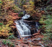 Fall Colors From Below Mohican Falls by Gene Walls