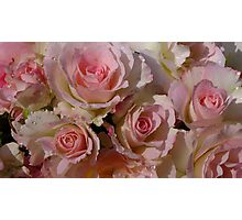 Seduction Roses Photographic Print