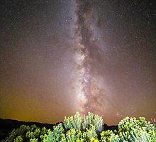 Milk & Sage @ Midnight Near Escalante Utah by Skip Weeks