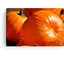 Fresh From the Pumpkin Patch! Canvas Print
