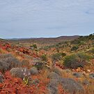 Gawler Ranges - Northern Eyre Peninsula, South Australia by Ian Berry