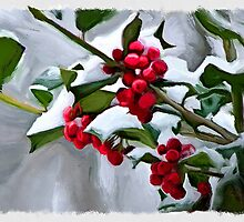 Holly Berry Digital Painting by amybeth