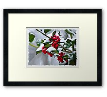 Holly Berry Digital Painting Framed Print