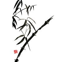 Bamboo japanese chinese sumi-e suibokuga tree watercolor original ink painting Photographic Print