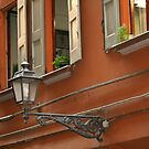 Windows with a Street Lamp by Segalili