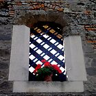 A Window with no Glass by Segalili