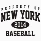 New York 2014 Baseball by worldcup