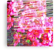 As an acknowledgement of unfathomable persistence. Canvas Print