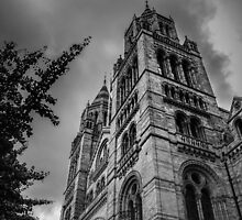 Natural History Museum by NathanGordon