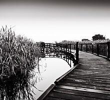 Herdsman Lake Boardwalk by dioptrewho