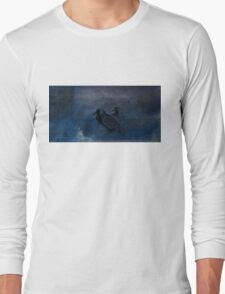 Two little crows blue sky dark night Long Sleeve T-Shirt