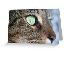 Cat's Eye Greeting Card