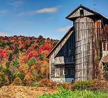 Farm Country by Janet Fikar