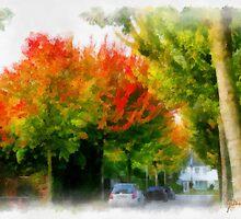 Autumn street in Edegem - Belgium by Gilberte