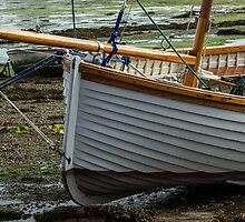 Little clinker boat by Judi Lion