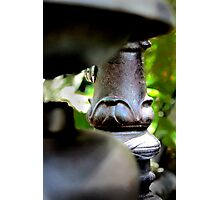Copper Water Fountain Photographic Print