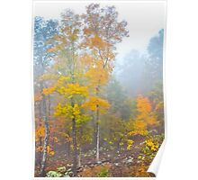 Virginian Mist Poster