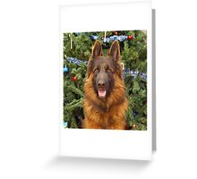 Hoss at Christmas Greeting Card