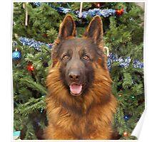 Hoss at Christmas Poster