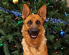 Isabelle at Christmas by Sandy Keeton