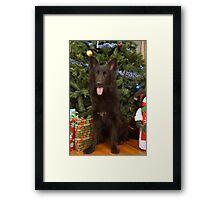 Phoenix at Christmas Framed Print