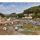 Looe Estuary, Cornwall by Andrew Roland