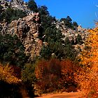 Cherry Creek Canyon by Arla M. Ruggles