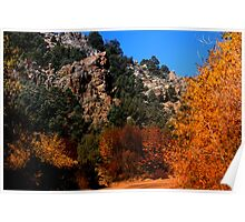 Cherry Creek Canyon Poster