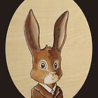 Benjamin Rabbit by kaydi-did-art