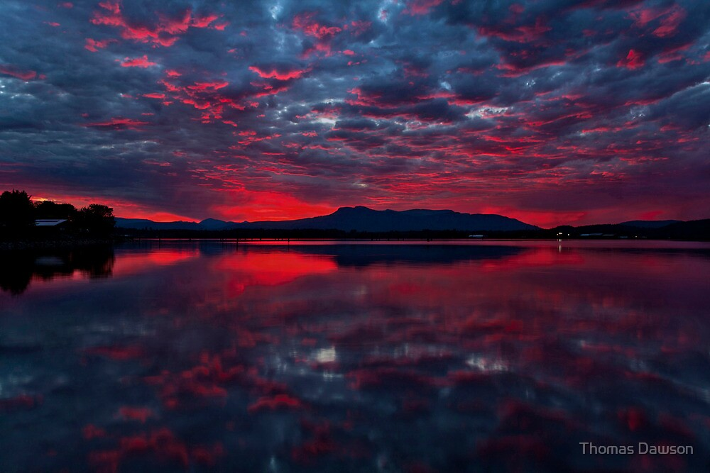 Light up the Sky by Thomas Dawson