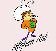 Afghan Ant by mouseman