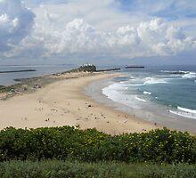Nobby's Beach, Newcastle by Roselene