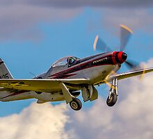 "Cavalier F-51D Mustang 2 NL405HC ""It's about time"" by Colin Smedley"