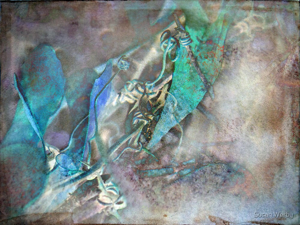 Mosaic of Blues in Nature by Susan Werby