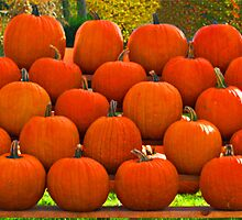 Pumpkins On Display by DavidHintz