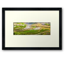 Ploughed and Planted Framed Print
