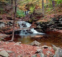 Waters Meet Fall Leaves by Gene Walls