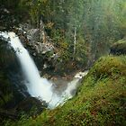Albas Park Falls by EchoNorth