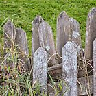 Vintage Farm Picket Fence by Studio-one
